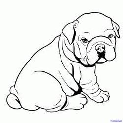 Coloring page farfignoogle kennels home of the english for Niagara falls coloring page